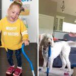 เจ้าตูบดีใจจนเก็บอาการไม่อยู่ เมื่อเห็นคู่หูที่พิการ เดินได้เป็นครั้งแรกในชีวิต