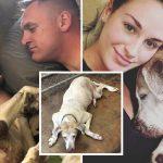 คู่รักรับเลี้ยงสุนัขแก่ที่อยู่ในศูนย์ถึง 7 ปี และทำให้ชีวิตใหม่ของมันเต็มไปด้วยความสุข