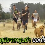 กลุ่มนักเรียนพาสุนัขจากศูนย์ฯ ออกไปวิ่งด้วยกัน แฮปปี้ทั้งเจ้าตูบและเด็กๆ