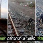 คนขับรถไฟ 'หยุดรถไฟ' อย่างกะทันหันเพื่อ 'ช่วยหมาจรจัด' ที่เจอกลางทาง
