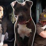 หมาไม่เหลือใครหลังเจ้าของตาย 'บุรุษไปรษณีย์' ที่สนิทจึงช่วยรับมันมาอยู่ด้วย