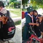 นักเรียนใส่หมาน้อยในกระเป๋า หวังเอาไปเลี้ยงที่บ้าน หลังโรงเรียนมีนโยบายกำจัดสุนัข