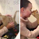 เด็กหญิงไปช่วยพ่อแม่ดูแลแมวจร แต่ถูกแมวน้อยเลือกเป็นทาส จึงกลับมือเปล่าไม่ได้!!