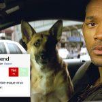 ต่อไปนี้ 'ดูหนัง' ไม่ต้องลุ้นแล้วว่า 'หมาตายไหม' เพราะ Does the Dog Die บอกคุณได้!!