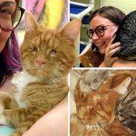 คู่รักอยากรับเลี้ยงแมวตาบอดในศูนย์ฯ อดไม่ได้ที่จะรับเพื่อนสนิทของมันมาด้วย
