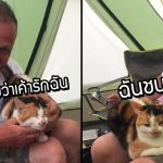 คุณเมียไม่ไหวจะเคลีย หนีแมวบ้านชอบแย่งผัวไปข้างนอก ก็ยังมีแมวมานอนซบผัวถึงเต้นท์