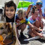ครอบครัวพาหมาป่วยหนักไปเที่ยวจัดเต็ม มันจะได้มีความทรงจำดีๆ ติดตัวก่อนตาย