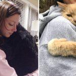 22 สัตว์เลี้ยงผู้มีหัวใจเต็มไปด้วยความรัก และมันไม่อายที่จะแสดงความรู้สึกนั้นต่อคุณ