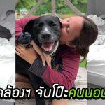 เจ้าของคิดว่าสุนัขทำให้เธอนอนผิดที่ผิดทาง แต่เมื่อเปิดกล้องฯ เจอความจริงที่พีคมาก…