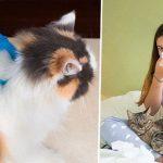 คนแพ้ขนแมวโปรดทราบ! ในอนาคตอาจมี 'วัคซีน' ที่ทำให้คุณอยู่กับแมวได้โดยไม่แพ้!