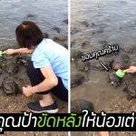 คุณป้าคนนี้ใจดีมาก ถือแปรงคู่ใจไปที่สระน้ำ ช่วยขัดหลังน้องเต่าให้สะอาด