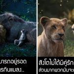 7 สิ่งในภาพยนตร์ Lion King ที่อาจทำให้คุณเข้าใจธรรมชาติของสิงโตแบบผิดๆ