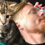 'ลูกแมวกำพร้า' ถูกใจพ่อบุญธรรมหนักมาก ถึงกับต้องตามกอดตามเฝ้าตลอดเวลา