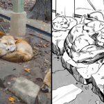 มาดู 10 ภาพสัตว์บวกจินตนาการชวนฮาของชาวเน็ต จนเกิดเป็นภาพ 'สัตว์กล้ามโต'!!
