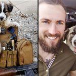 ทหารหนุ่มเก็บลูกหมามาเลี้ยงระหว่างสงคราม พบว่าจริงๆ แล้วมันเป็นฝ่ายดูแลเขา