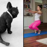 22 สุนัขผู้รัก 'การฝึกโยคะ' จะยืดซ้ายยืดขวา โยกหน้าโยกหลัง ก็เก่งไม่แพ้มนุษย์เลยล่ะ