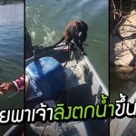 ชายหนุ่มน้ำใจงาม หยุดช่วยเหลือลิงตกน้ำ แล้วยังพามันนั่งเรือไปส่งถึงฝั่ง