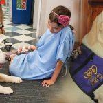 'วันที่ 4 สิงหาคม วันสุนัขผู้ช่วย' เราลองมาทำความรู้จัก กับสุนัขผู้ช่วยให้ดีขึ้นกันเถอะ