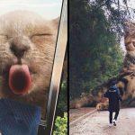 20 ภาพจากศิลปินจะทำให้คุณเห็นว่า ถ้าแมวบนโลกตัวใหญ่ยักษ์ มันจะเกิดอะไรขึ้น!?