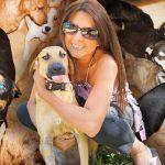 หมาจรจัด 97 ตัวปลอดภัยจากพายุ เพราะได้หญิงรักสัตว์พาพวกมันมาหลบภัยในบ้าน