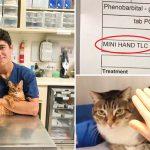 หนุ่มนักเรียนสัตวแพทย์ ใช้ 'มือจิ๋ว' ลูบเอาใจเจ้านาย กลายเป็นความน่ารักแบบมินิๆ