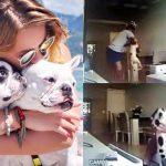 สาวยกเลิกงานแต่งสายฟ้าแลบ หลังพบว่าคู่หมั้นของเธอทำร้ายสุนัขที่เธอรักมากที่สุด
