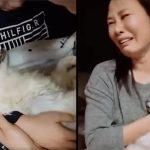 หญิงชาวเกาหลี ร้องเพลงขับกล่อมสุนัข เพื่อให้มันสบายใจในช่วงลมหายใจสุดท้าย