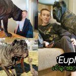 พบกับเจ้า 'Euphrates' หมายักษ์ตัวโต๊โต มองยังไงก็ไม่น่าเชื่อว่ามันเป็น 'ลูกหมา'!?