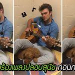คุณหมอดีดกีตาร์ร้องเพลงปลอบสุนัข ก่อนจะเข้ารับการผ่าตัด ช่วยให้น้องรู้สึกผ่อนคลาย