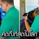 ซาบซึ้งจนต้องน้ำตาไหล เมื่อหนุ่มได้เจอเจ้าหมาที่หายไปนาน 8 ปีแบบไม่คาดคิด