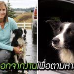 หญิงตัดสินใจลาออกจากงาน ออกตามหาสุนัขที่หายไป ไม่ถอดใจจนเจอใน 57 วันต่อมา