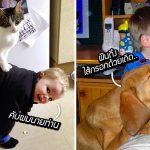 นักจิตฯ เผย 'เด็กที่โตมากับสัตว์เลี้ยง' จะสุขภาพดี และมีความเห็นอกเห็นใจมากกว่า