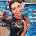 """ศูนย์อนุรักษ์สัตว์ เปิดให้คนมาว่ายน้ำกับเหล่า """"นาก"""" บอกเลยว่าน่ารักกว่านี้ไม่มีแล้ว!!"""