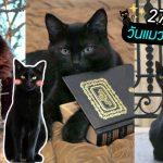 มัดรวม 20 รูปน่ารักของเหล่าแมวดำ เพื่อรับวันพิเศษ '27 ตุลาคม วันแมวดำแห่งชาติ'