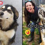 20 สัตว์โลกที่พกความน่ารักมาเต็มเปี่ยม พร้อมจะทำให้คุณอารมณ์ดีในทุกสถานการณ์