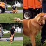 น้องหมารักคนเก็บขยะมากๆ และจะวิ่งออกไปหาเขาทุกครั้งที่รถขยะมาจอดหน้าบ้าน