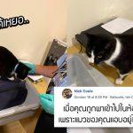 ทาสวางแผนจะไปเที่ยวกัน โดยให้เจ้าแมวอยู่เฝ้าบ้าน มันจึงวางแผนแอบตามไปด้วย