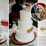เจ้าสาวขอเค้กแต่งงาน ที่มีความซนของตูบแฝงไว้ ถูกใจมากเมื่อเห็นเค้กจริงในวันงาน