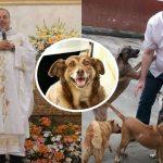 บาทหลวงให้สุนัขจรจัดเข้ามาอาศัยอยู่ในโบสถ์ เพื่อปลุกจิตสำนึกในการใส่ใจเพื่อนร่วมโลก