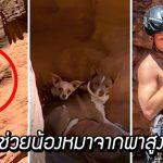 หนุ่มปีนขึ้นไปบนหุบเขา เพื่อช่วยเหลือสุนัข 2 ตัวที่ติดอยู่สูง 18 เมตรจากพื้นดิน