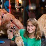 เจ้าแมวเหมียวมาบาร์เหล้ากับทาสบ่อย จนมันกลายเป็นลูกค้าประจำของร้านไปแล้ว