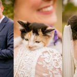 ชายหนุ่มรู้ว่าแฟนสาวเป็นทาสแมว เขาจึงนำ 'ลูกแมว' มาเซอร์ไพรส์เธอในวันแต่งงาน