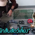 """หนุ่มจีนเปิดบริษัท """"นักสืบสัตว์เลี้ยง"""" ใช้เครื่องมือไฮเทคหาสัตว์หาย แบบนี้ก็มีด้วย!?"""