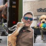 """บุรุษไปรษณีย์สหรัฐฯ สร้าง """"กรุ๊ป"""" ไว้แชร์รูปสัตว์เลี้ยงของลูกค้า ที่แต่ละคนเจอระหว่างงาน"""