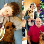 หมาใกล้ตายในศูนย์ฯ ได้ของขวัญวันคริสต์มาส เป็นคนใจดีที่เข้ามาช่วยดูแลมัน