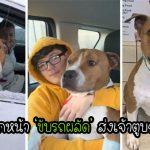สุนัขถูกลักพาตัว อาสาสมัคร 15 คน จึง 'ขับรถผลัด' เพื่อส่งเจ้าตูบกลับบ้านให้ทันวันคริสต์มาส