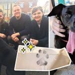 4 หนุ่มอยากเล่นกับหมาข้างบ้าน จึงติดต่อไปหาเจ้าของ ได้จดหมายตอบกลับสุดน่ารัก