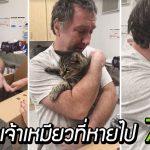แมวแก่เจอทาสอีกครั้ง หลังไม่เห็นกันนาน 7 ปี ทำเอาคนรอบๆ ซึ้งจนกลั้นน้ำตาไม่อยู่