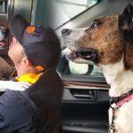 เจ้าหน้าที่รวมตัวแสดงความยินดี ที่หมาซึ่งอยู่ในศูนย์ฯ เกือบ 500 วัน มีคนมารับเลี้ยง