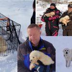 คู่รักบังเอิญพบสุนัขอยู่บนยอดเขาที่ปกคลุมด้วยหิมะ ก่อนจะพบลูกๆ ของมันอีก 3 ตัว